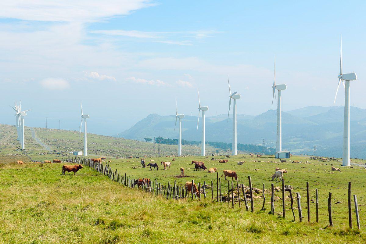 300.000 nuevos puestos de trabajo para luchar contra el cambio climático en España