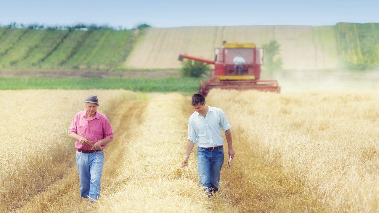 https://blog.ruralvia.com/wp-content/uploads/2019/09/ayudas-jovenes-agricultores-1280x720.jpg