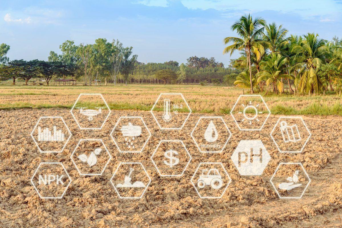 Agrotech, la necesaria transformación de la agricultura