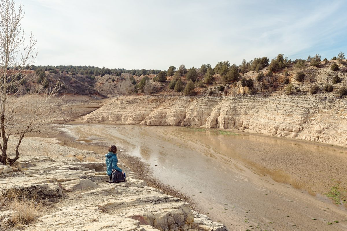 """""""Salvar los bosques es frenar la desertificación"""""""
