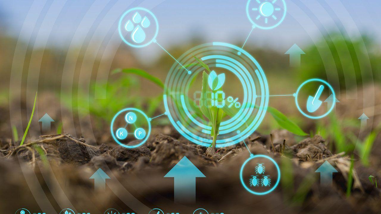 https://blog.ruralvia.com/wp-content/uploads/2020/07/La-tecnologia-en-el-campo-ventajas-1280x720.jpg
