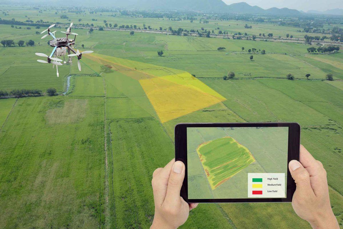 La tecnología en la agricultura: analizamos los sensores más novedosos