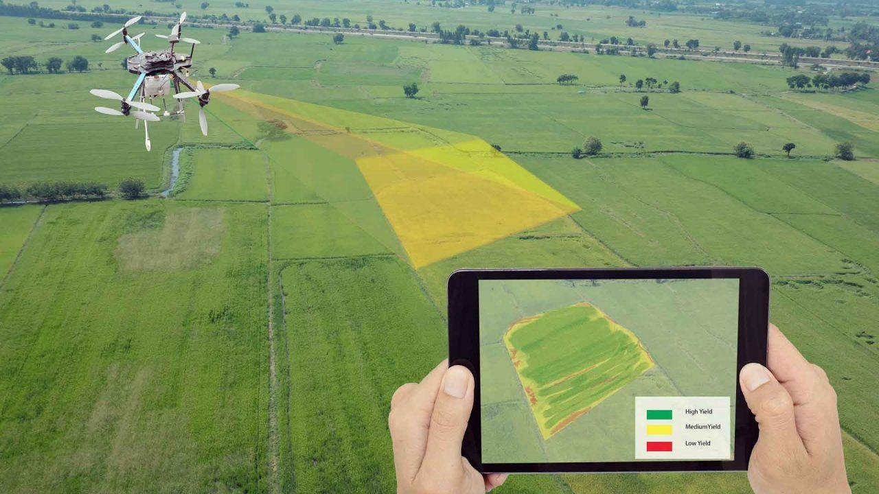 https://blog.ruralvia.com/wp-content/uploads/2021/03/Tecnologia-agricultura-1280x720.jpg
