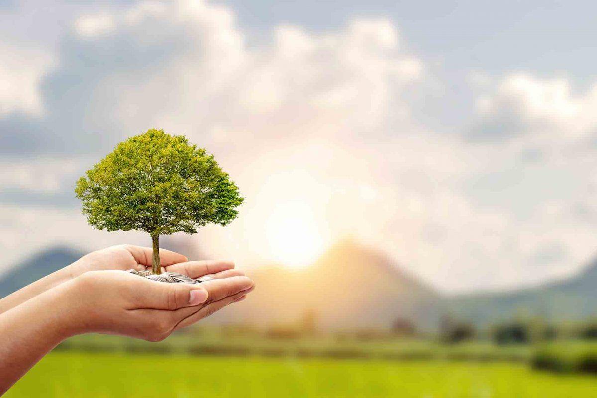 Fondos de inversión sostenibles, ¡una opción que te acerca Gescooperativo!