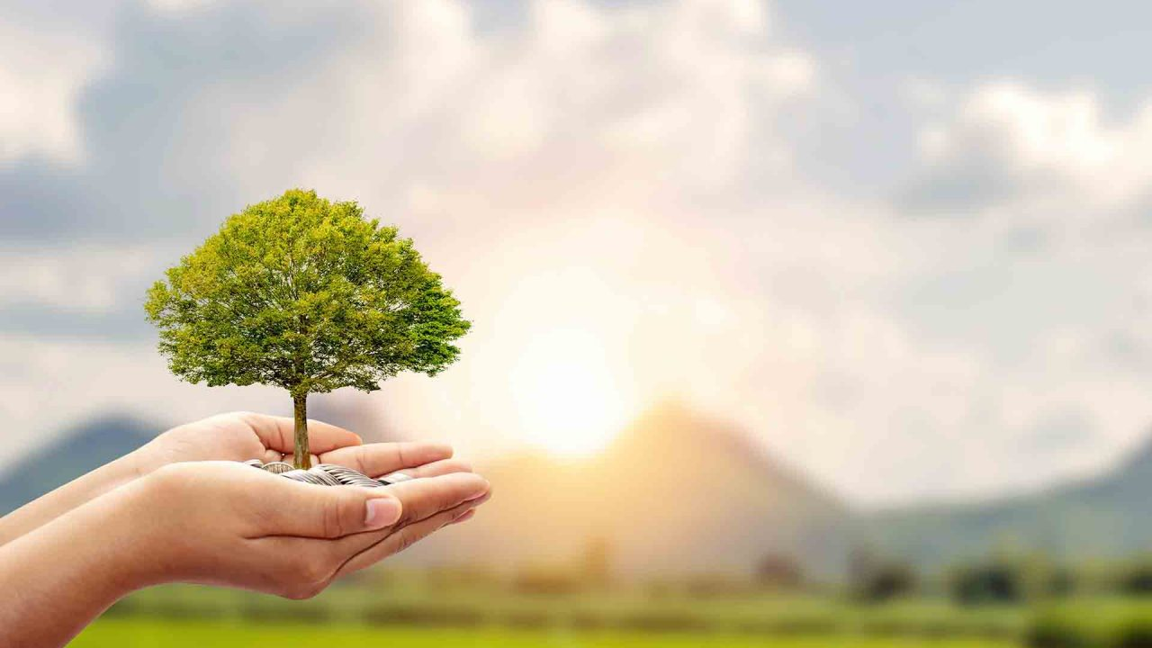 https://blog.ruralvia.com/wp-content/uploads/2021/04/fondos-de-inversión-sostenibles-Gescooperativo-1280x720.jpg