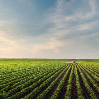 Descubre en qué consiste el Pacto Verde Europeo: ¡apoya la sostenibilidad!