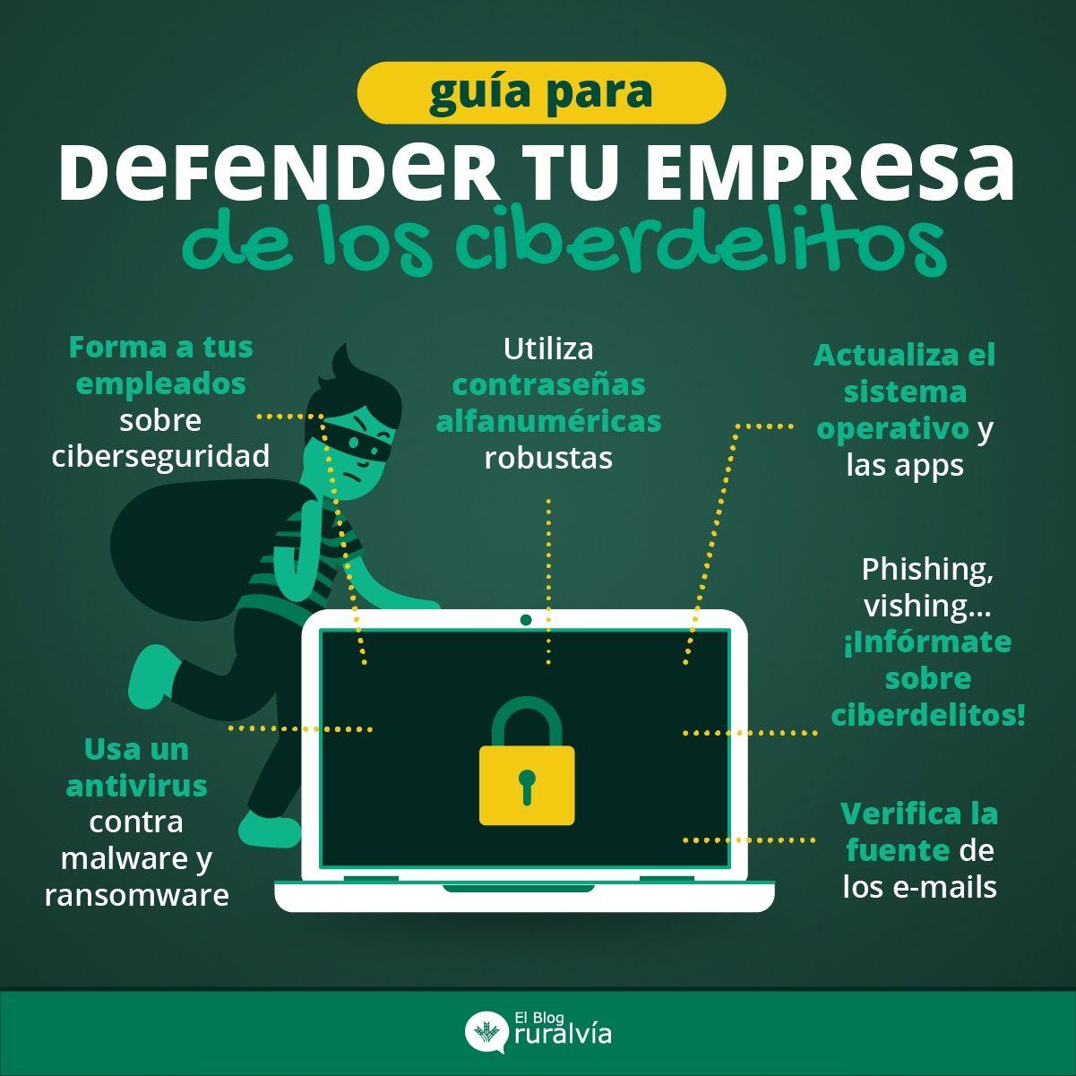 protege-empresa-ciberdelitos