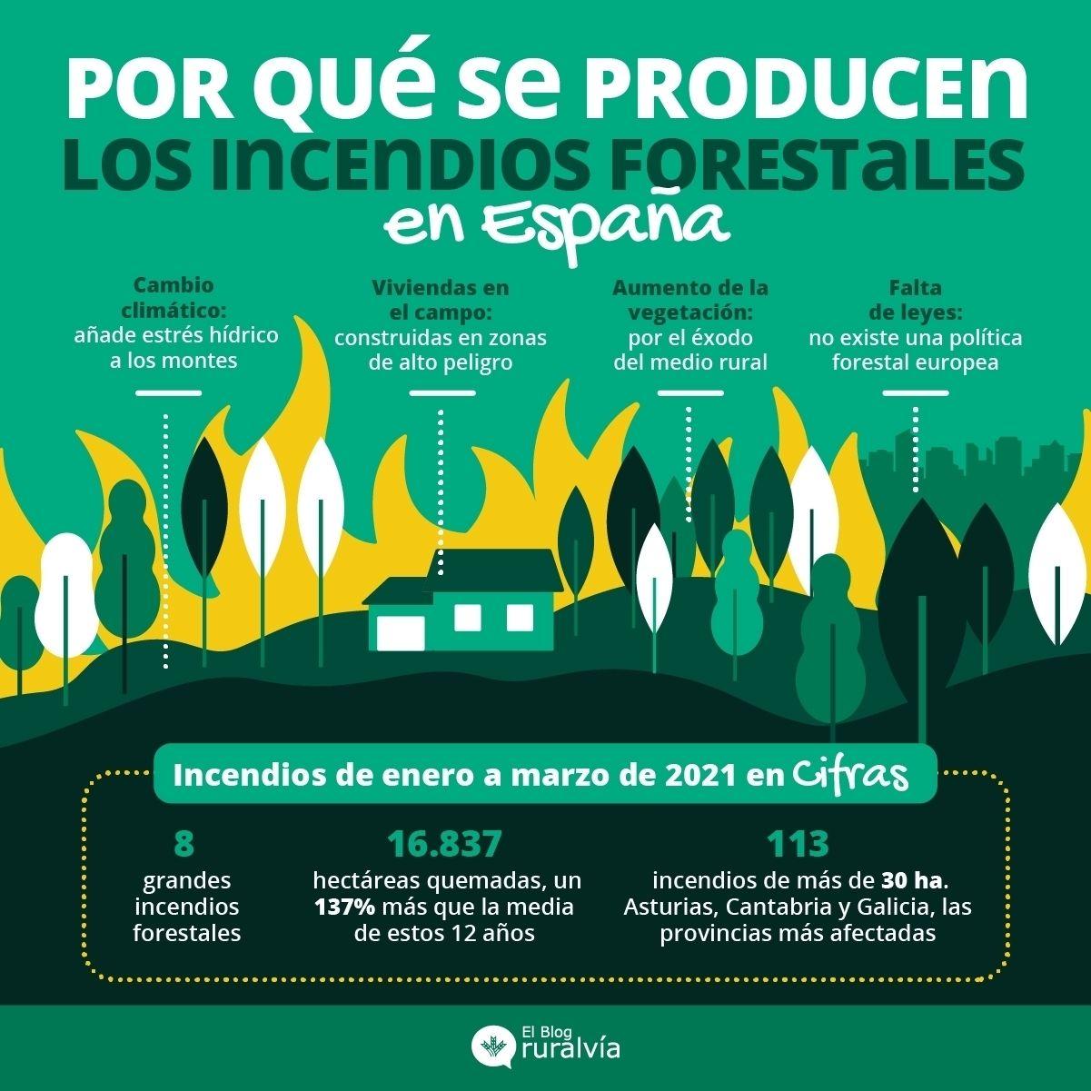 incendios-foretales-2021