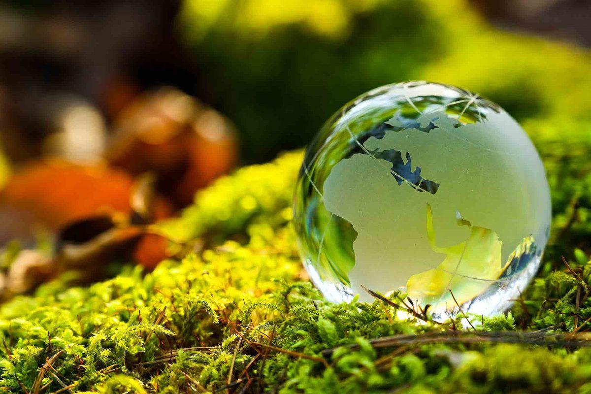 ¿En qué consiste el Pacto Verde Europeo? La ambición por una Europa sostenible