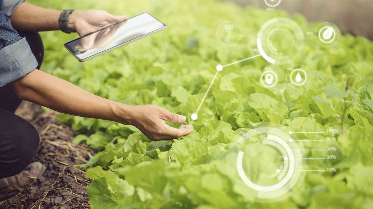 https://blog.ruralvia.com/wp-content/uploads/2021/09/Tecnologias-agricolas-1280x720.jpg