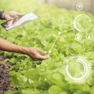 Las tecnologías agrícolas que todo agricultor debería conocer